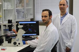 JLM-BioCity new-treatment-glioblastoma